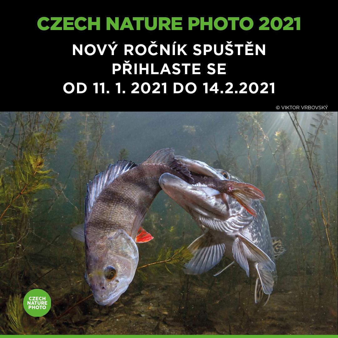 20210104_CNP_FCB_INSTA_1080x10802